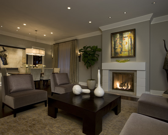 Honore Transitional Living Room Dining Room